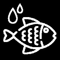 Re-Hidratar Pescado