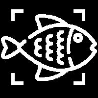 Conservar Pescados